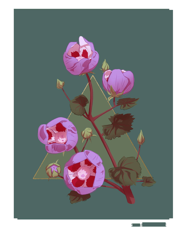 Desert Five Flower